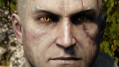 Insane Geralt Eyes (Books Inspired)