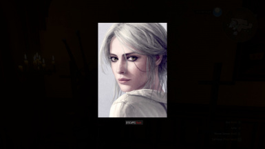 Correct image of Ciri Portrait 02 in Inventory Image Viewer
