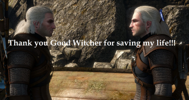 Succubus witcher skellige 3 The Witcher