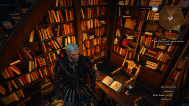 Geralt is placed on top of a stack of books after speaking to Novigrad Book Merchant