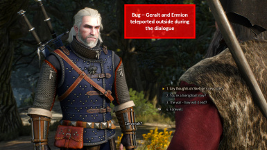 Bug - Geralt and Ermion Mysteriously Teleported Outside