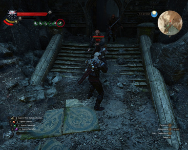 Not work if Geralt outside dark place during the day