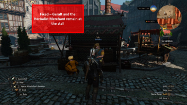 Quirky Placement - Novigrad Herbalist Fixed