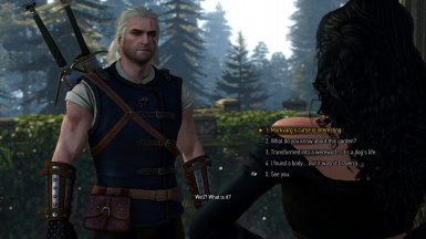 Removed limit on dialogue options with Yen during Nameless, talk to her as often as you want