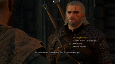 Fixed Missing Dialogue - Inn at the Crossroads During First Trip to Velen
