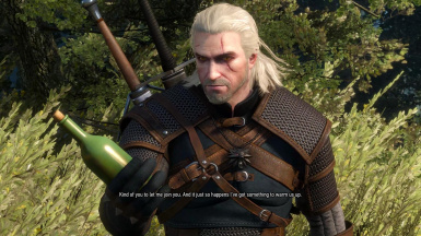 Fixed Hidden Dialogue - Strangers in the Night quest