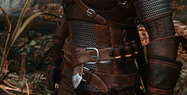 Professional Witcher Belt and Items