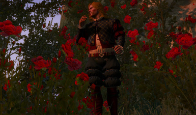 Wine red outfit for Jaskier-Dandelion