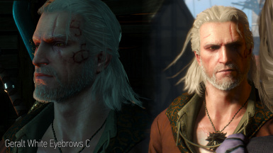 Geralt HairWorks Colors and Styles