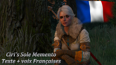 Ciri's Sole Memento - French Voice and Text
