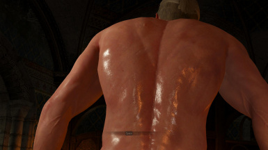 witcher3 reduced body scars v2 back view1