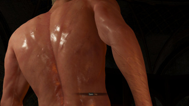 witcher3 reduced body scars v2 back view2