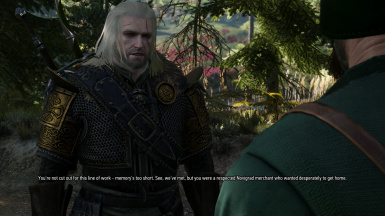 no alternate hairstyles at the witcher 3 nexus mods and community