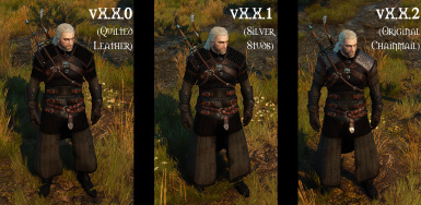 Roaming Witcher's Armor at The Witcher 3 Nexus - Mods and community