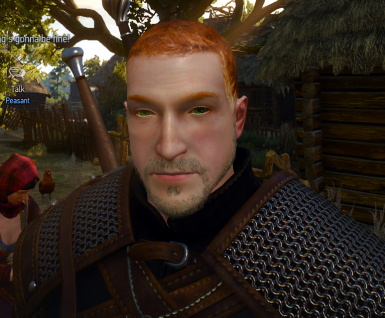 Ginger Witcher