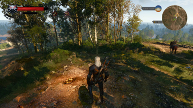 Witcher 3 Basic Needs