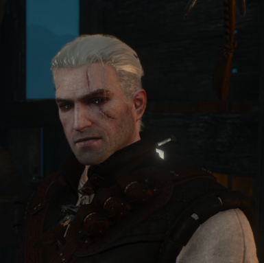 Gwynbleidd - Lore Friendly Geralt Retexture