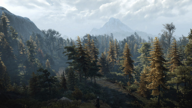 Autumn Yellow Skellige